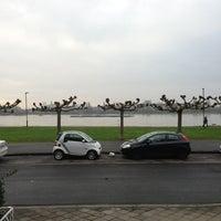 Photo taken at Rheinallee by Mark on 12/28/2012
