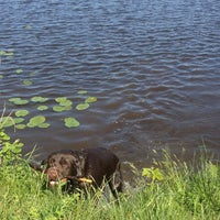 Photo taken at Озеро Сювеярви (Хиттоловское) by Sergey on 6/2/2013