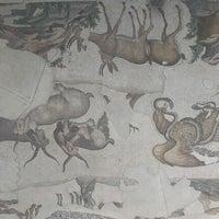 10/10/2012 tarihinde tarık e.ziyaretçi tarafından Büyük Saray Mozaikleri Müzesi'de çekilen fotoğraf