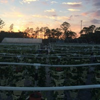 Photo taken at Better Food Farm by Jacqueline C. on 10/30/2014