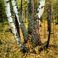 Photo taken at Сузун by Дмитрий П. on 9/17/2012