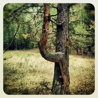Photo taken at Сузун by Дмитрий П. on 9/20/2012