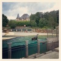 Photo taken at Safari de Peaugres by iWebgirl on 10/3/2012