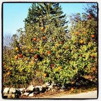 Photo taken at SMOLAK FARMS by Derek P. on 10/27/2012