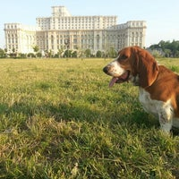 Photo taken at Parcul Izvor by Cristi V. on 7/4/2013
