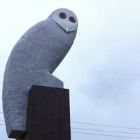 Photo taken at Owl Statue by Gary L. on 1/19/2013