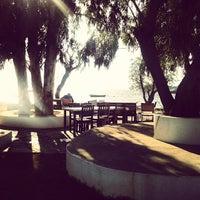 Foto diambil di Arriba Cafe oleh Ege N. pada 10/18/2013