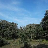 Photo taken at Monte de Boadilla by Lars E. on 3/2/2013