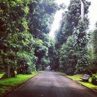 Photo taken at Bogor Botanical Gardens by Pinot on 12/6/2012