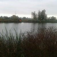 Photo taken at Корчагин Парк - Beach Club by Veronni on 9/22/2012