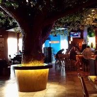 Photo taken at Koko Sushi Bar & Lounge by Brian S. on 8/20/2013