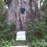 3/16/2013 tarihinde Serap S.ziyaretçi tarafından Zübeyde Hanım Anıt Mezarı'de çekilen fotoğraf