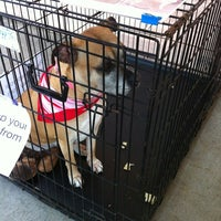 Photo taken at PetSmart by Michelle C. on 4/14/2012