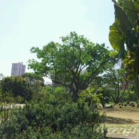 Photo taken at Parque Escola by Thiago D. on 9/26/2011