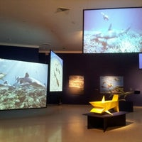 Photo taken at Museum of Art Fort Lauderdale by Laura T. on 6/24/2012