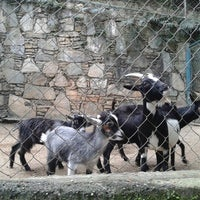 Photo taken at Expanzoo by Héctor S. on 9/2/2012
