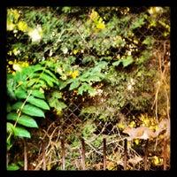 Photo taken at Cambridge University Botanic Gardens by Damien R. on 8/10/2012