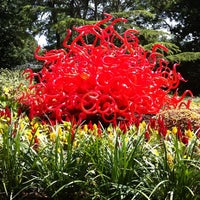 Foto tirada no(a) Dallas Arboretum and Botanical Garden por Seattle's G. em 5/19/2012