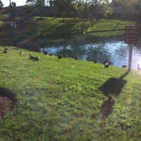 Photo taken at The Duck Pond by Penny N. on 9/9/2012