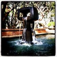 Photo taken at UCLA Franklin D. Murphy Sculpture Garden by alexander s. on 11/21/2011