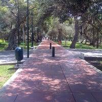 Foto tomada en Bosque El Olivar por Juan Carlos A. el 11/28/2011