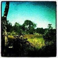 Photo taken at Jacksonville Arboretum & Gardens by Aeryck on 11/11/2011