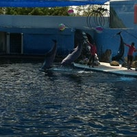 Photo taken at Oasis Sea World by Namon N. on 7/21/2012