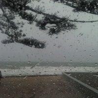 Photo taken at Mairangi Bay Beach by Iresha W. on 10/10/2011
