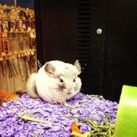 Photo taken at PetSmart by Mary-Majella O. on 8/9/2012
