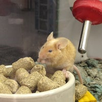 Photo taken at Petco by Abigail M. on 3/31/2012