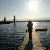 Photo taken at Tropical Geneva by Julie C. on 4/17/2012