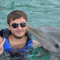 Photo taken at Dolphin Encounter by Сергей Б. on 11/16/2013