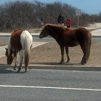 Photo taken at Assateague Island National Seashore (Maryland) by Erik K. on 3/30/2013