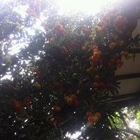 Photo taken at telapak karya by Bayu D. on 12/17/2012