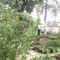Photo taken at Саженцы by Edwardino O. on 8/15/2014