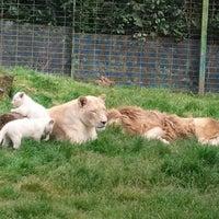 Photo prise au Zoo de Pont Scorff par Delphine D. le5/14/2013