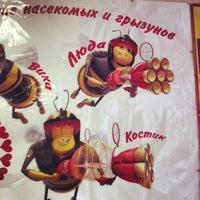"Photo taken at МБУ ""Псковский бизнес-инкубатор"" by Demian💠G💠Kalinin on 10/19/2012"