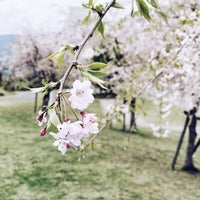 Photo taken at いせはらサンシャインスタジアム by Takashi S. on 4/6/2018