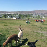 Photo taken at Badger Mountain Dog Park by Adam W. on 5/4/2013