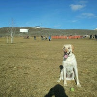 Photo taken at Badger Mountain Dog Park by Adam W. on 1/27/2013