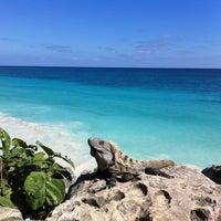 Photo taken at Tulum Archeological Site by Marc G. on 12/15/2012