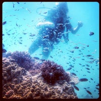 Photo taken at Rainbow Dive Center Phu Quoc by Ashley M. on 11/16/2013
