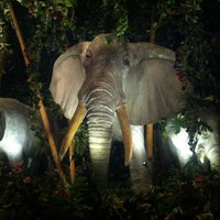 Photo taken at Rainforest Cafe by Kel on 10/27/2012