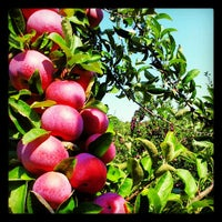 Photo taken at Honey Pot Hill Orchards by Ryan R. on 9/14/2012