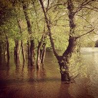 Снимок сделан в Русанівський парк пользователем Julia P. 5/4/2013