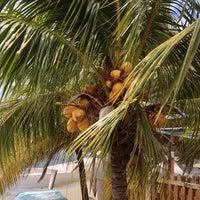 Photo taken at Playa La Galera by Vladimir on 2/27/2013