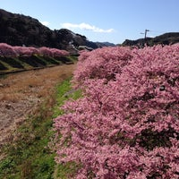 Photo taken at 湯けむり橋 by niena on 3/8/2014