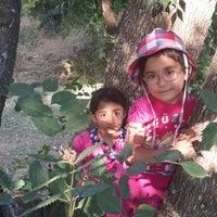 Photo taken at dumlupınar Ortaokulu by Metin on 9/19/2014