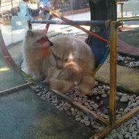 Photo taken at Batu Secret Zoo by Valeria N. on 7/31/2013