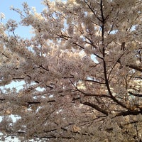 Photo taken at Asiana Town by 겸겸겸 on 4/7/2014